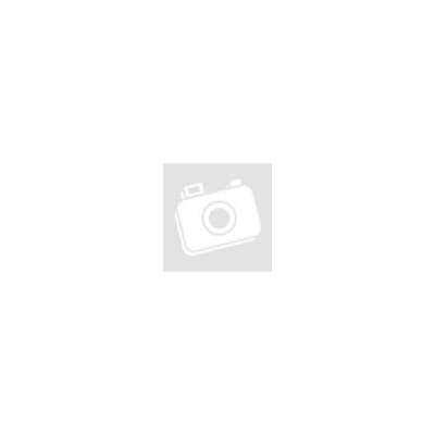 Raimondi 1/2 Bullnose wheel, radius 6mm - dry use